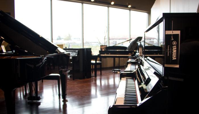 Several ebony Yamaha pianos.