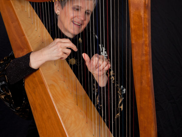 Introduction to Harp Lessons