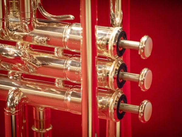 Case for the Yearly Brass Tune Up