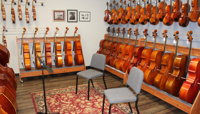 String Gallery picture featuring our intermediate and pro orchestral instruments