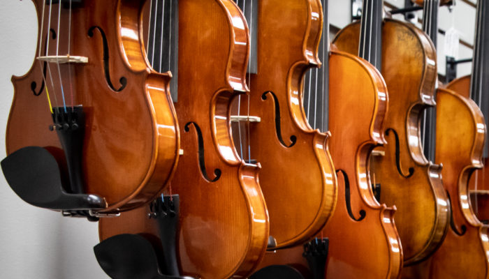 6 violins on display