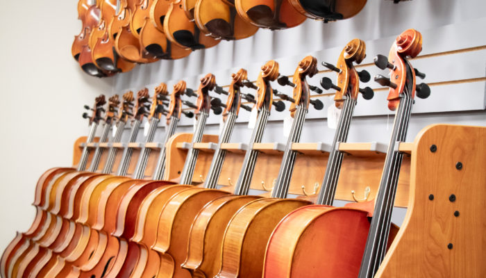 Large selection of cellos and violins on display.